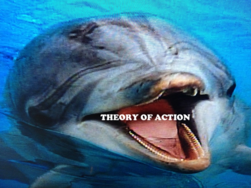 THEORYOFACTION